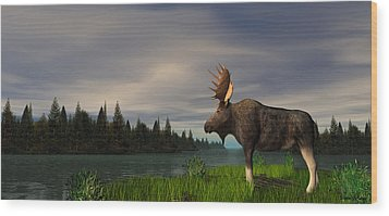 Moose Wood Print by Walter Colvin