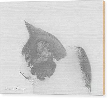 Moozie Cat Drawing Wood Print