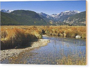 Morain Park Colorado Wood Print by James Steele