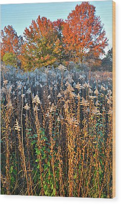 Wood Print featuring the photograph Moraine Hills Fall Colors by Ray Mathis