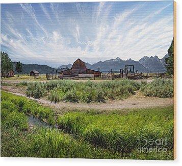 Mormon Row Morning Wood Print