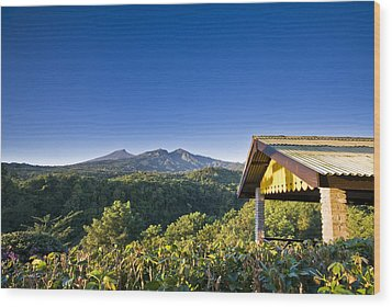 Wood Print featuring the photograph Morning At Countryside by Ng Hock How