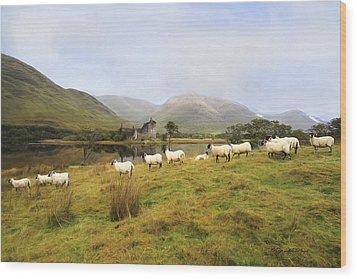 Wood Print featuring the photograph Morning At Kilchurn by Roy  McPeak
