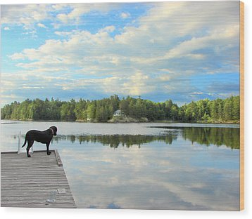 Morning At Pine Lake Wood Print