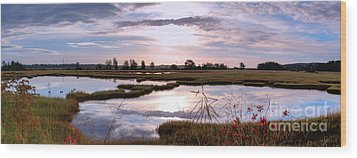 Morning At The Marsh Wood Print