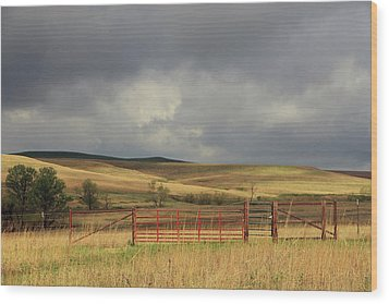Morning At The Tallgrass Prairie Wood Print by Christopher McKenzie