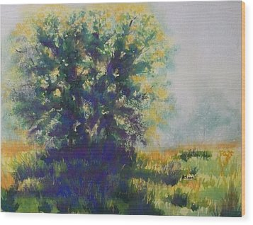 Morning Backlight Wood Print by Becky Chappell