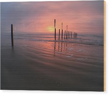 Wood Print featuring the photograph Morning Bliss by Sharon Jones