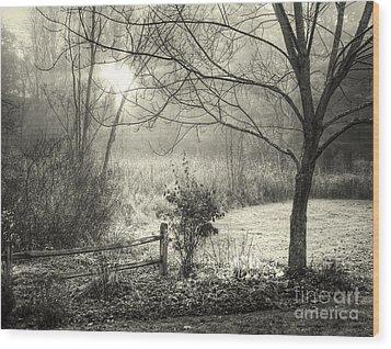 Morning Breaking Wood Print by Betsy Zimmerli