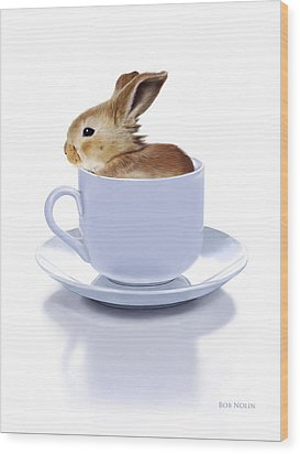 Morning Bunny Wood Print by Bob Nolin