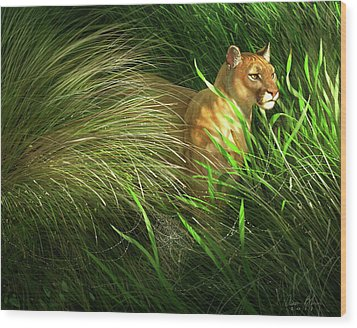 Morning Dew - Florida Panther Wood Print by Aaron Blaise