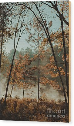 Wood Print featuring the photograph Morning Fog At The River by Iris Greenwell