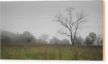 Morning Fog Wood Print by Ryan Heffron