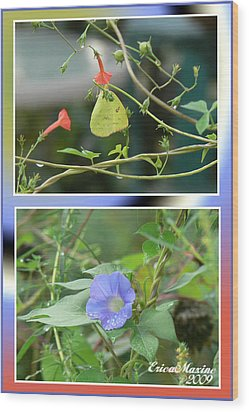 Morning Glories And Butterfly Wood Print by EricaMaxine  Price