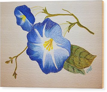 Morning Glory Wood Print by J R Seymour