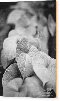 Morning Glory Vines Wood Print
