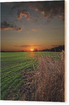Morning Glow Wood Print by Phil Koch