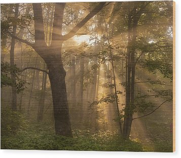 Morning God Rays Wood Print