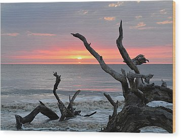 Morning Greeting Wood Print by Bruce Gourley