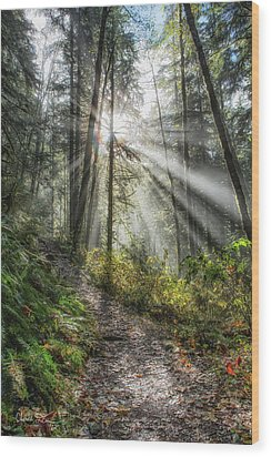 Morning Hike Wood Print