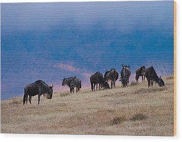 Morning In Ngorongoro Crater Wood Print by Adam Romanowicz