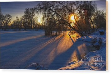 Wood Print featuring the photograph Morning Light by Franziskus Pfleghart