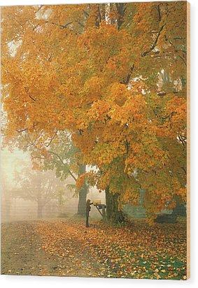 Morning Mail Cambridge Vermont Wood Print