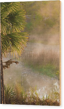 Wood Print featuring the photograph Morning Mist by Margaret Palmer