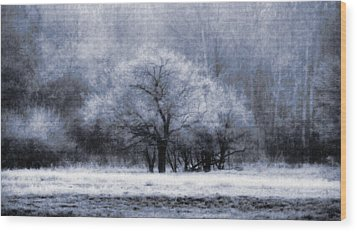Morning Mood Wood Print by Mimulux patricia no No