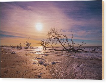 Wood Print featuring the photograph Morning On Boneyard Beach by Steven Ainsworth