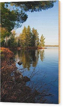 Morning On Chad Lake 4 Wood Print
