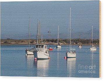 Morning On Morro Bay B3984 Wood Print
