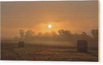 Morning On The Farm Wood Print by Ron  McGinnis