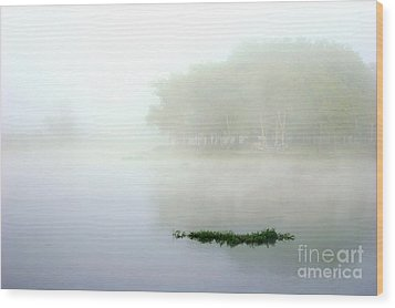 Morning On The Parana Wood Print by Balanced Art