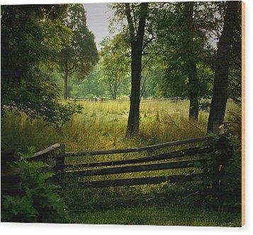 Morning Pasture Wood Print