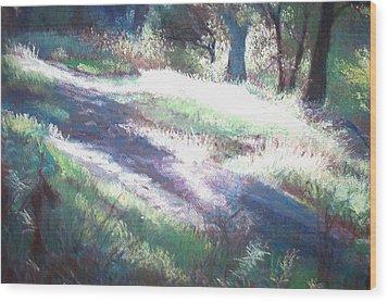 Morning Rays Wood Print by Anita Stoll