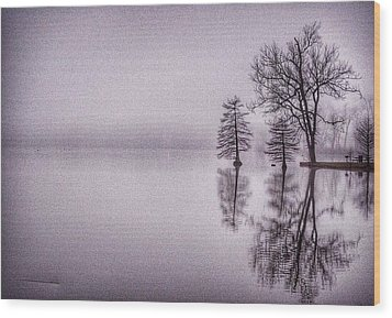 Morning Reflections Wood Print by Sumoflam Photography