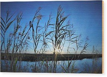 Good Day Sunshine Wood Print by John Glass