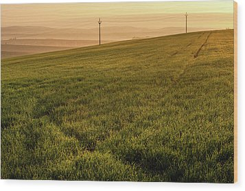 Wood Print featuring the photograph Morning Sun. Moravian Tuscany by Jenny Rainbow