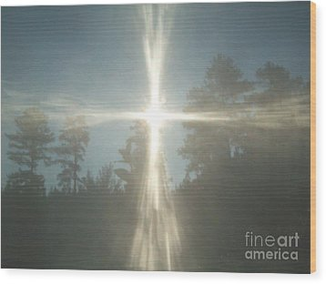 Wood Print featuring the photograph Morning Sunlight by Robin Coaker