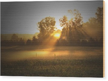 Morning Sunrise On The Cornfield Wood Print by Cathy  Beharriell