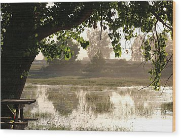 Wood Print featuring the photograph Morning Tranquility  by Christy Pooschke