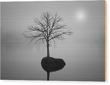 Morning Tranquility Wood Print by Dave Gordon