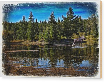 Wood Print featuring the photograph Morning Walk by Gary Smith