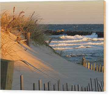 Wood Print featuring the photograph Morning's Light by Dianne Cowen