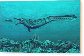 Mosasaurs Wood Print by Walter Colvin