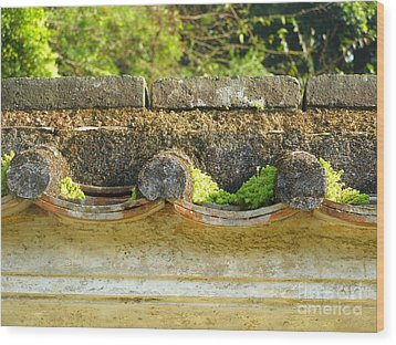 Moss On An Old Chinese Roof Wood Print by Kathy Daxon