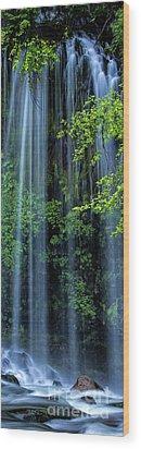 Mossbrae Falls  Wood Print