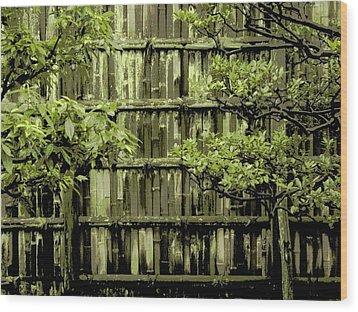 Mossy Bamboo Fence - Digital Art Wood Print by Carol Groenen