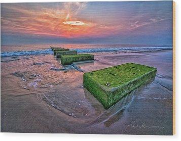 Mossy Blocks 6312 Wood Print by Dan Beauvais